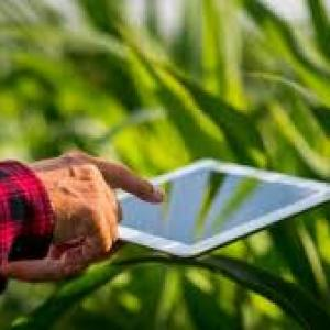 Perícia e avaliação de imóveis rurais